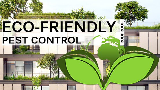 Eco-friendly-pest-control-header-image-rodproof